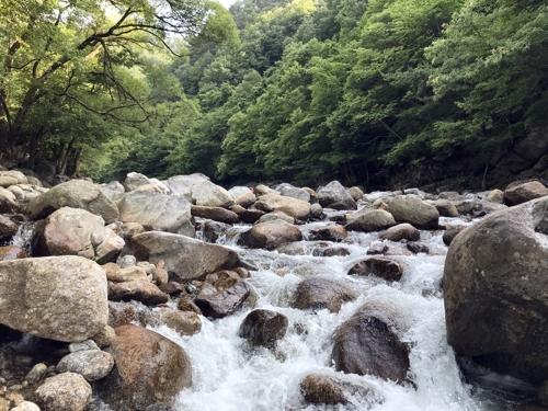 [여긴 가봐야지:전북] 숲·계곡·바다 한곳에…입도 즐거운 피서지