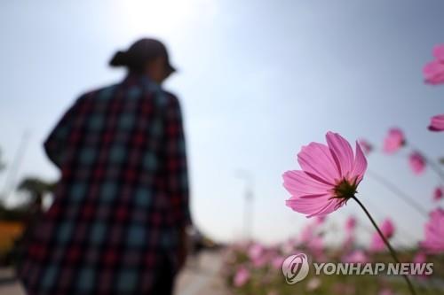 대전·세종·충남 맑고 일교차 커…낮 기온 21∼24도