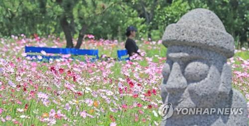 한국은행 4차 산업기술 접목 제주관광 콘텐츠 개발해야