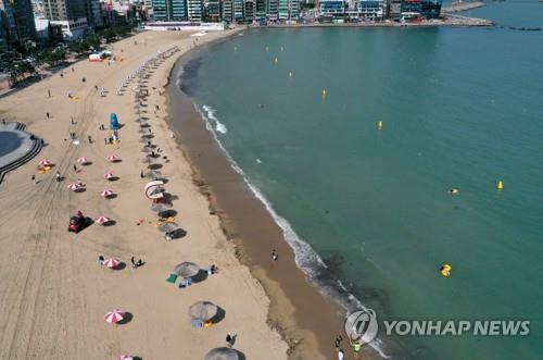 Parasols are installed 2 meters apart on Gwangalli Beach in Busan on its formal opening day, July 1, 2020. (Yonhap)