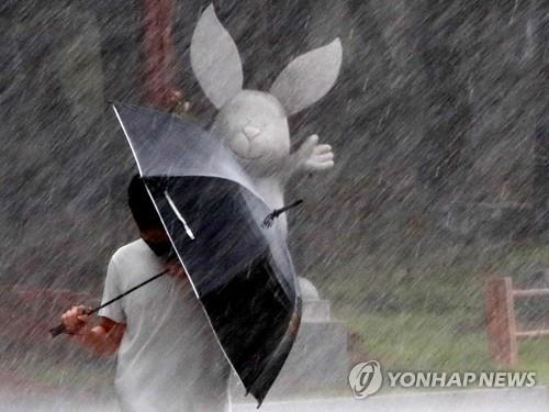 A pedestrian walks through heavy rain in the southeastern city of Busan on Aug. 10, 2020. (Yonhap)