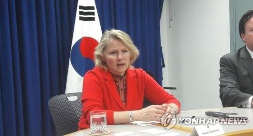 Susan Thornton, the then acting U.S. assistant secretary of state for East Asian and Pacific Affairs, speaks to reporters during a press meeting held in Seoul on April 24, 2018. (Yonhap)