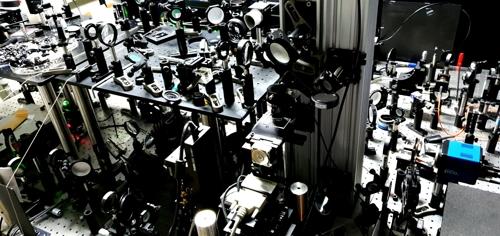 IBS 초고속 홀로그램 현미경
