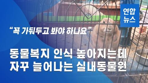 [이슈 컷] 동물복지 인식 높아지는데…늘어나는 실내동물원 - 2