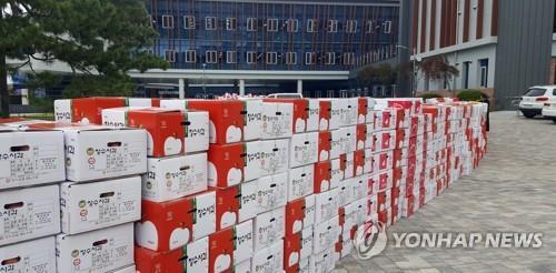 '사과값 폭락' 전북 장수군, 대책위원회 구성 | 연합뉴스