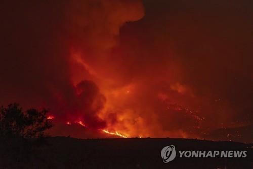 미국 애리조나주에서 발생한 산불