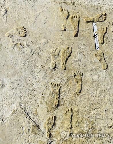 뉴멕시코 화이트샌즈 국립공원의 인류 발자국 화석 [AP=연합뉴스]