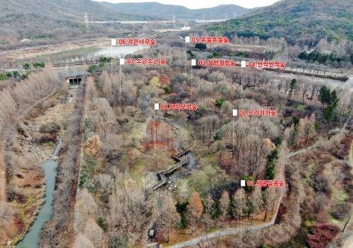 인천시, 인천대공원에 두 번째 유아숲체험원 조성 - 1
