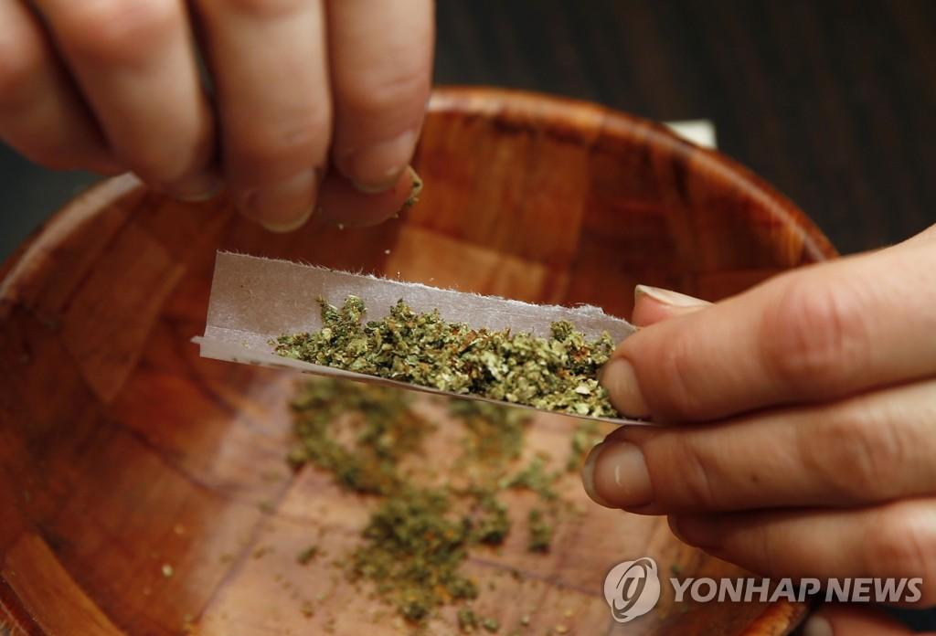 """""""마리화나에 암 억제 성분""""   연합뉴스"""
