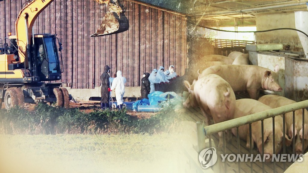 (2nd LD) Another suspected African swine fever case reported in South Korea