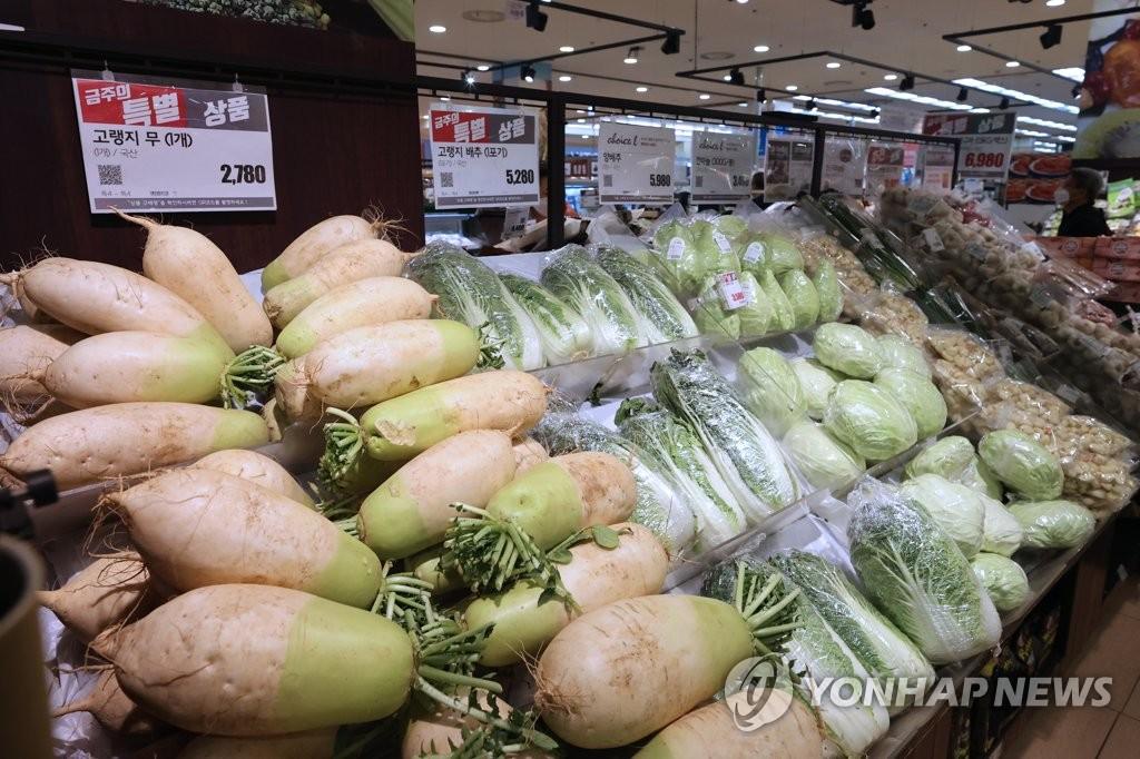 서울역 롯데마트의 무와 배추